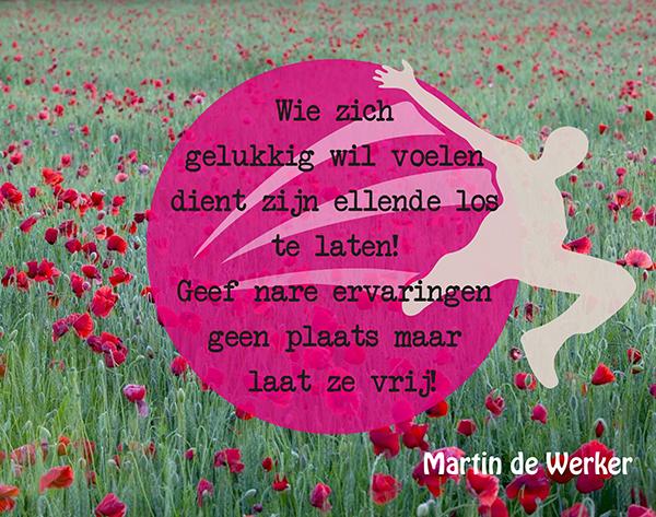 Martin de Werker 003 low