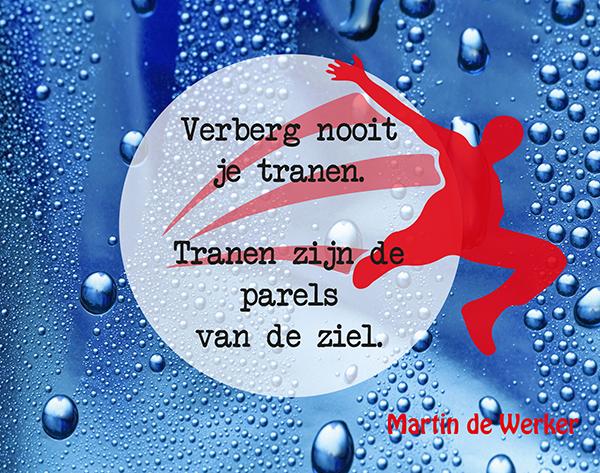 Martin de Werker 017 low